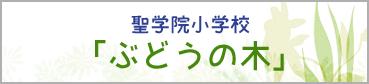 聖学院小学校「ぶどうの木」